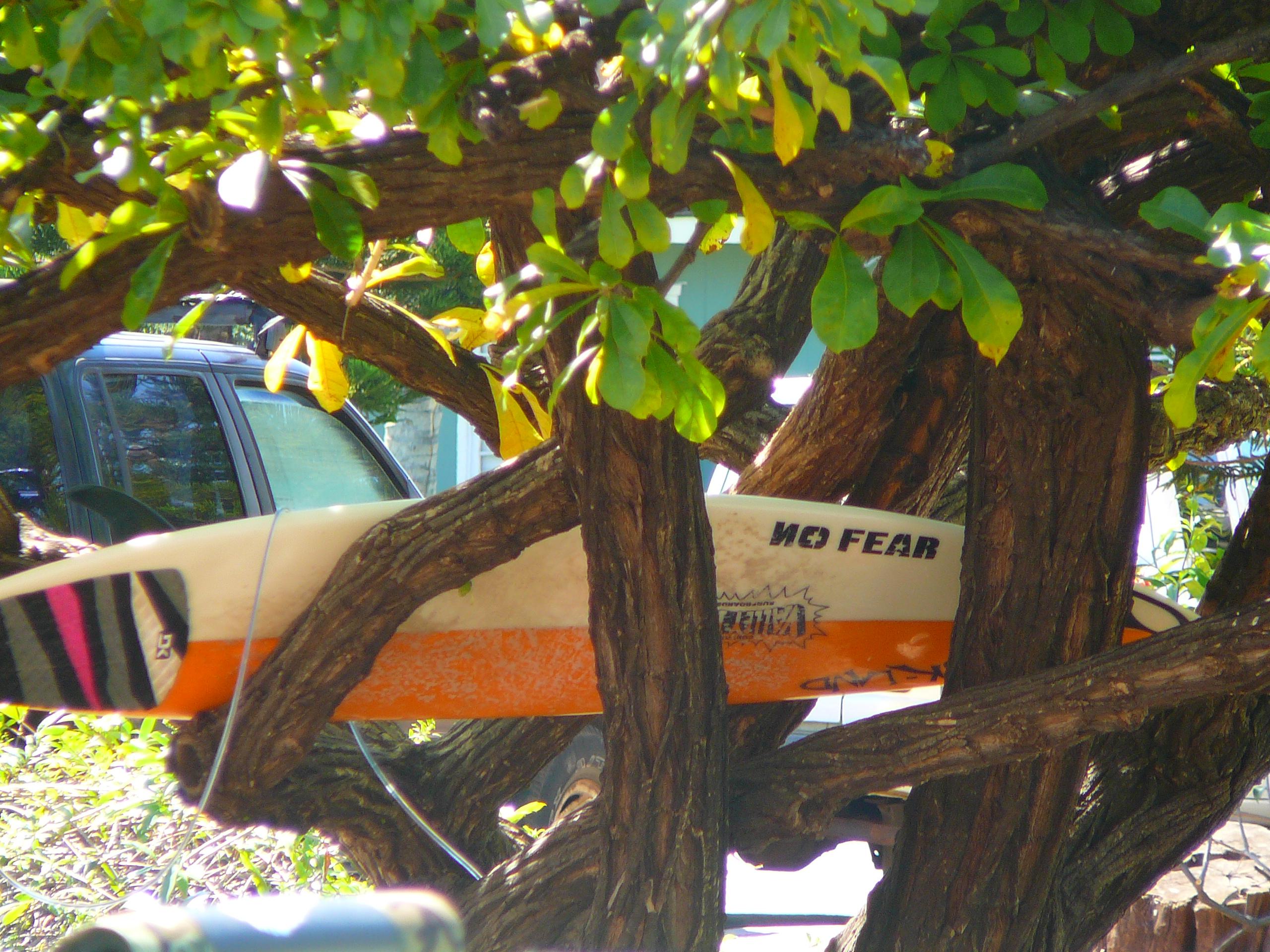 Lahaina, Maui 218