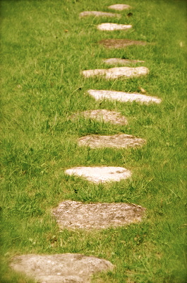 Stepping stones, grassy path
